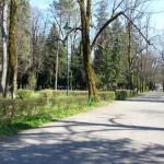 ct-njegosev-park-1